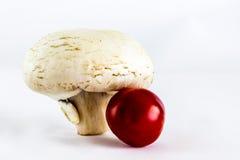 Pilz und Tomate Stockfotos