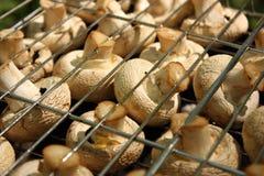 Pilze auf dem Grill Lizenzfreies Stockfoto