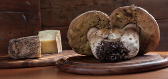 Pilze auf einem hölzernen Ausschnittvorstand Lizenzfreie Stockfotos