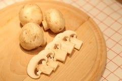 Pilze, Champignons Stockbilder