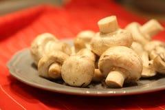 Pilze, Champignons Lizenzfreie Stockbilder