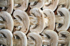 Pilze cutted auf Schreibtisch Lizenzfreies Stockbild