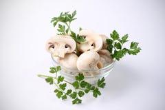Pilze in der Schüssel Stockfoto