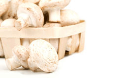 Pilze in einem Korb Stockfotografie