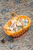 Pilze in einem Weidenkorb Lizenzfreies Stockbild