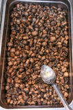 Pilze gekocht Stockfotografie