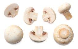 Pilze getrennt auf weißem Hintergrund Beschneidungspfad eingeschlossen Lizenzfreies Stockbild