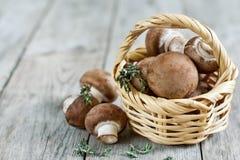Pilze im Korb Lizenzfreie Stockfotos