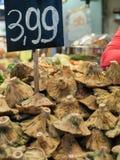 Pilze am Markt Lizenzfreie Stockbilder