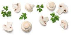 Pilze mit der Petersilie lokalisiert auf weißem Hintergrund Beschneidungspfad eingeschlossen Stockbilder