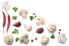 Pilze mit der Petersilie lokalisiert auf weißem Hintergrund Beschneidungspfad eingeschlossen Stockfoto