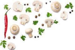 Pilze mit Petersilie auf weißem Hintergrund Beschneidungspfad eingeschlossen Stockfoto