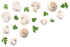 Pilze mit Petersilie auf weißem Hintergrund Beschneidungspfad eingeschlossen Stockfotografie