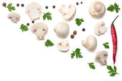 Pilze mit Petersilie auf weißem Hintergrund Beschneidungspfad eingeschlossen Stockfotos