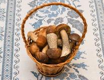 Pilze und Boletus Porcini in einem Korb Lizenzfreies Stockfoto