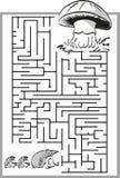 Pilzlabyrinth, Labyrinth Stockfoto
