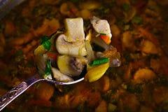 Pilzsuppe und Löffel stockfotografie