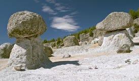 Pilztal im Weidenkorb Lizenzfreie Stockbilder
