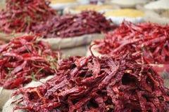 Pimentão secado vermelho Imagens de Stock