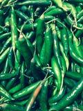 pimentão verde fotografia de stock royalty free