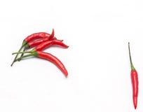 Pimentão vermelho Imagens de Stock Royalty Free