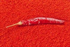 Pimentão vermelho Foto de Stock Royalty Free