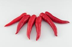 Pimentão vermelho isolado Fotografia de Stock