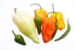 Pimentões coloridos misturados imagem de stock