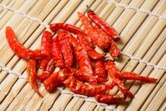 Pimentões secos vermelhos Imagens de Stock