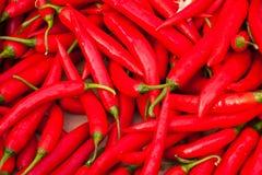 Pimentões vermelhos Imagem de Stock Royalty Free