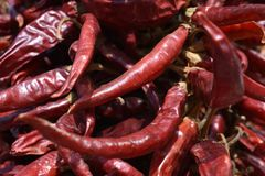 Pimentões vermelhos fotos de stock royalty free
