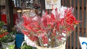 Pimentões vermelhos frescos e quentes foto de stock royalty free