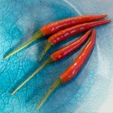 Pimentões vermelhos na placa azul Imagem de Stock Royalty Free