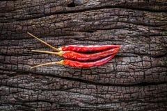 Pimentões vermelhos secos Fotos de Stock