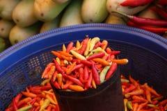 Piment de diverses couleurs image libre de droits