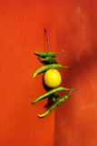 Piment et citron accrochant à la façade Image stock