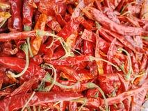 Piment rouge photo libre de droits