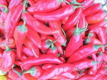 Piment rouge Images stock