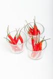 Piment rouge d'isolement Photo stock