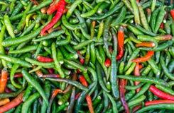 Piment rouge de poivre de piments chauds et vert frais à vendre sur le marché Photos libres de droits