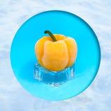 Pimenta amarela congelada no cubo de gelo imagem de stock royalty free