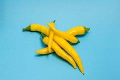 Pimenta amarela da malagueta picante isolada no azul Fotografia de Stock Royalty Free