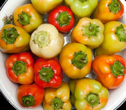 Pimenta búlgara Imagem de Stock Royalty Free