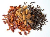 Pimenta, canela e cravos-da-índia secados de pimentões Fotografia de Stock