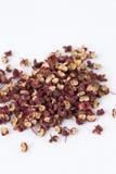 Pimenta chinesa de Sichuan ou casca da cinza espinhosa (jia de hua fotografia de stock