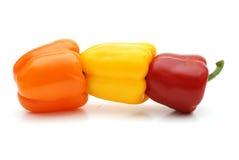 Pimenta colorida Foto de Stock