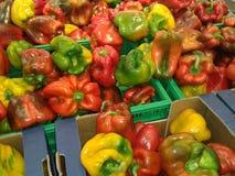 Pimenta colorida Imagem de Stock