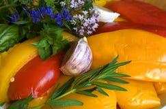 Pimenta com ervas frescas Imagens de Stock Royalty Free