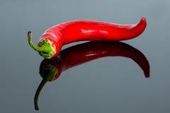 Pimenta com reflexão Imagem de Stock