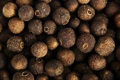 Pimenta da Jamaica Imagem de Stock Royalty Free